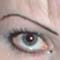 eyecon.jpg
